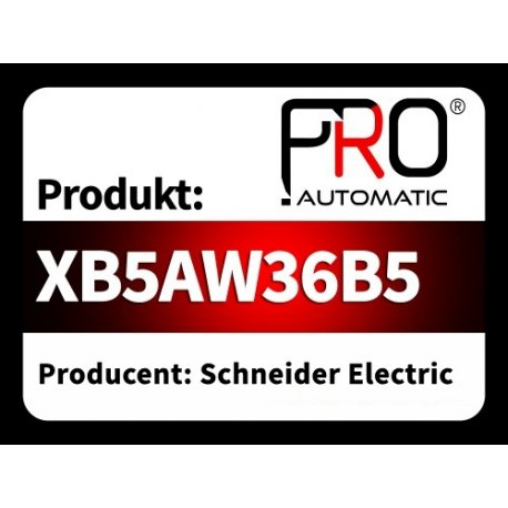 XB5AW36B5