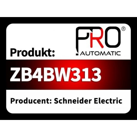 ZB4BW313