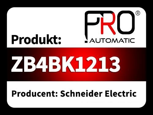 ZB4BK1213