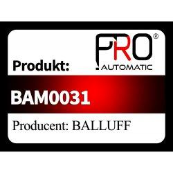BAM0031