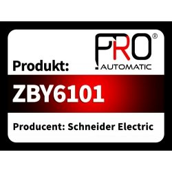 ZBY6101