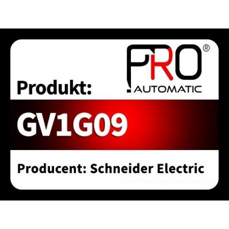 GV1G09