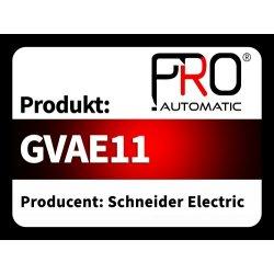 GVAE11