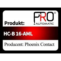 HC-B 16-AML