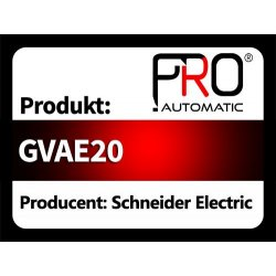 GVAE20