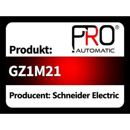 GZ1M21